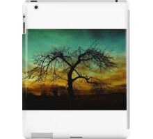 AUTUMN SCENE iPad Case/Skin