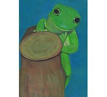 It's A Frog's Life Photographic Print