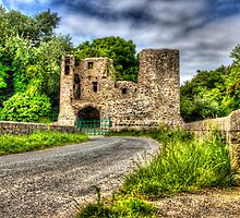 Mahee Castle by rosscaughers