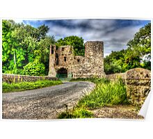Mahee Castle Poster