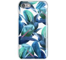 Rubber Plant #redbubble #lifestyle iPhone Case/Skin