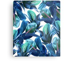 Rubber Plant #redbubble #lifestyle Metal Print