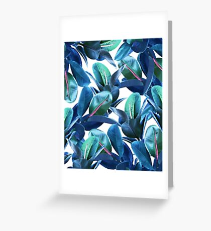 Rubber Plant #redbubble #lifestyle Greeting Card
