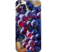 Saw it on the Grape Vine iPhone Case/Skin