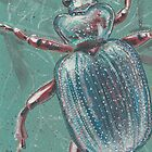 Shiny Beetle by Troglodyte