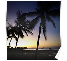 Palm Tree Silhouettes Poster