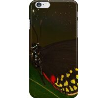 Starry Butterfly (I.17) iPhone Case/Skin