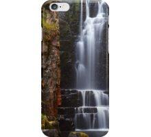 Spring Falls iPhone Case/Skin