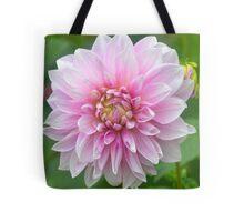 Soft Pink Dahlia Tote Bag