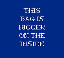 Bigger on the Inside by Nana Leonti