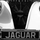 Vintage Jaguar  by Cody  VanDyke