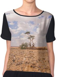 Desert Oasis. Photographed in Israel Chiffon Top