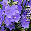 Psalm 33:22 NIV by Rainydayphotos
