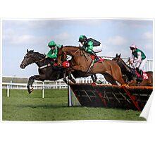 Steeplechase Racehorse Portrait Poster