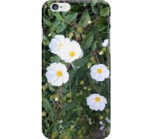 Floral Display iPhone Case/Skin