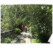 Thicket, High Line, New York City's Elevated Garden and Park  Poster
