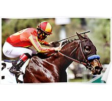 Thoroughbred Racehorse Watercolor   Poster