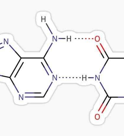 Adenine - Thymine hydrogen bond - Chemical structure Sticker