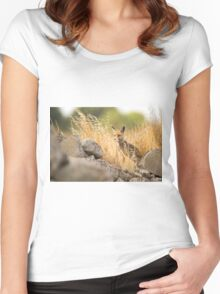 Red Fox (Vulpes vulpes) in the wild Women's Fitted Scoop T-Shirt