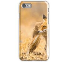 Red Fox (Vulpes vulpes) in the wild iPhone Case/Skin
