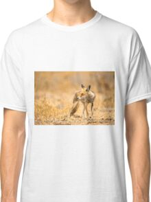 Red Fox (Vulpes vulpes) in the wild Classic T-Shirt