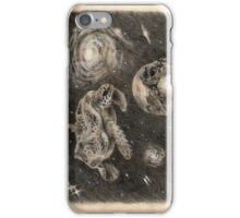 Turtle Universe iPhone Case/Skin