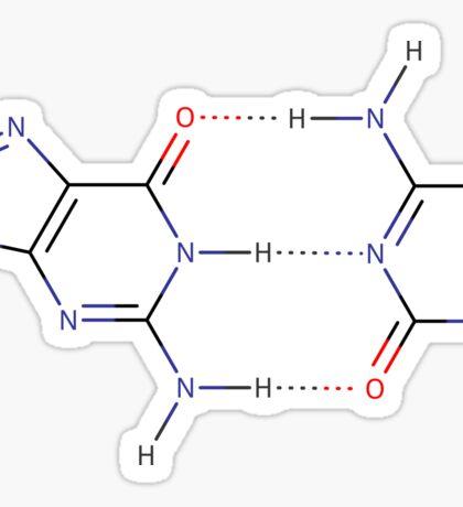 Guanine - Cytosine hydrogen bond - Chemical Structure Sticker