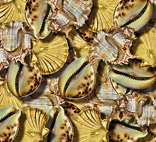 Summer Filter Shellfish Duvet by GolemAura