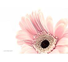 Imaginary Garden Photographic Print