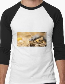 Large Whipsnake (Coluber jugularis) photographed in Israel in March Men's Baseball ¾ T-Shirt