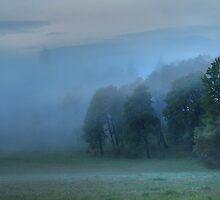 God's Pasture II by Skye Ryan-Evans