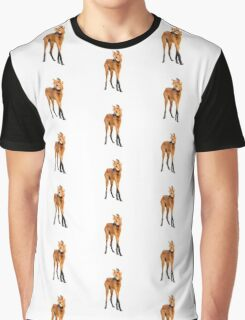 Maned Wolf Flower Crown Graphic T-Shirt