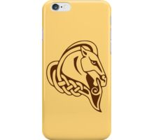 Whiterun Alternate Color iPhone Case/Skin
