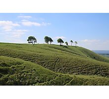 Roundway Down - George Orwell 1984 Photographic Print