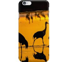 Common crane (Grus grus) Silhouetted at sun-set iPhone Case/Skin