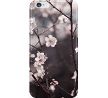 Joy of Spring iPhone Case/Skin