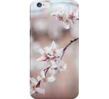 Spring Cherry Delight iPhone Case/Skin