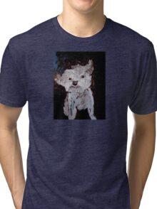 dog in the breeze Tri-blend T-Shirt