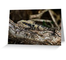 You can't see me can you? Greeting Card