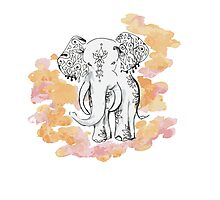 Lucky Elephant Photographic Print