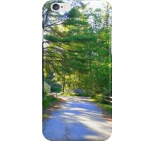 Country Road New Hampshire iPhone Case/Skin