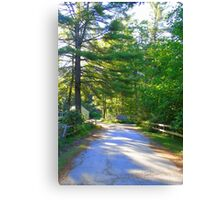 Country Road New Hampshire Canvas Print