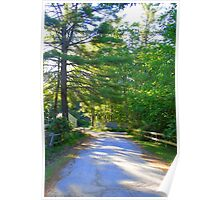 Country Road New Hampshire Poster
