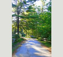 Country Road New Hampshire Unisex T-Shirt