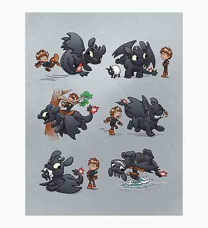 How Not to Train Your Dragon Photographic Print