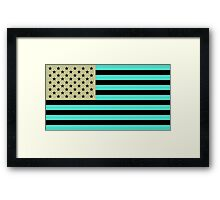 USA flag inverted color Framed Print