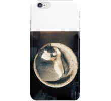 Sleeping In A Sunbeam iPhone Case/Skin