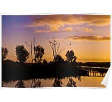 Sunrise over Pellaring Flat, South Australia 2013 Poster