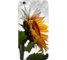 EMERGING COLOR  iPhone Case/Skin