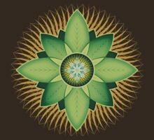 Central Anahata by Soul Structures